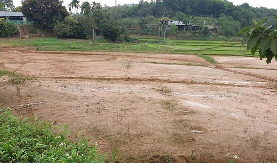 Yên Bình (Yên Bái): Kiểm tra, khắc phục việc đất tràn vào ruộng của người dân