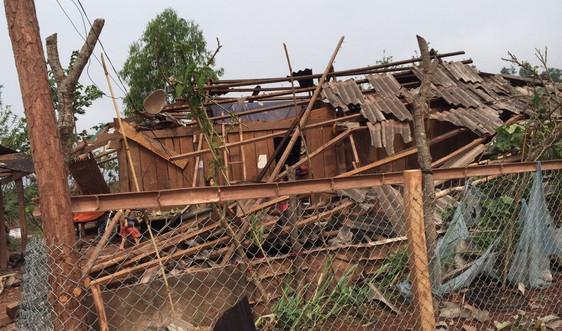Điện Biên: Lên phương án phòng, chống thiên tai và tìm kiếm cứu nạn năm 2021