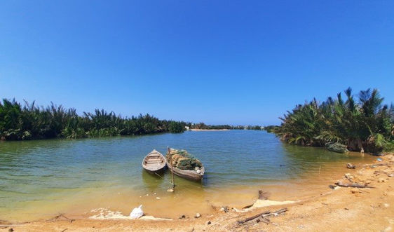 Công ty Đạt Phương được cấp rừng dừa ở phố cổ làm dự án bất động sản