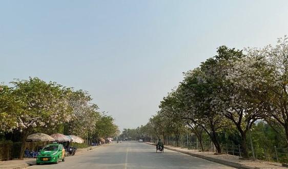 Điện Biên: Xây dựng thành phố không rác