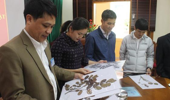 Sơn La bàn giao 89 mẫu tiêu bản sinh vật ngoại lai xâm hại và có nguy cơ xâm hại
