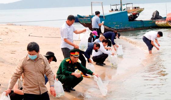 TP.Móng Cái (Quảng Ninh): Thả 450 nghìn con tôm, cá giống xuống biển tái tạo môi trường