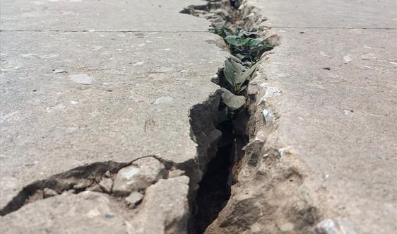 Nho Quan - Ninh Bình: Xuất hiện nhiều vết nứt trên tuyến đê phòng lũ