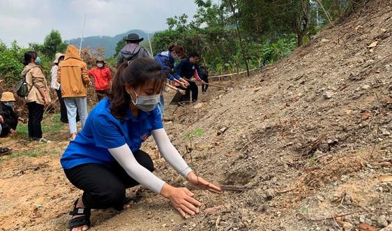 Sinh viên Đà Nẵng trồng 1.000 cây xanh gây dựng Công viên khoa học