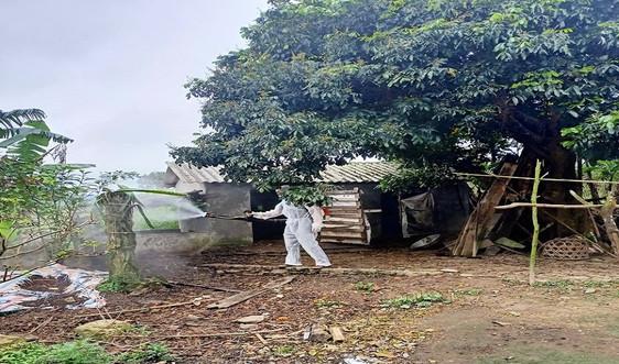 Quảng Bình: Cấp bách phòng, chống dịch bệnh động vật