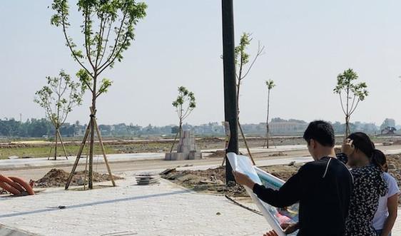 Thủ tướng Chính phủ yêu cầu nghiên cứu thông tin báo nêu về đất đai