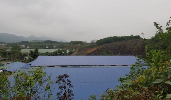 Đại Từ - Thái Nguyên: Dấu hiệu bao che  cho trang trại lợn xả thải gây ô nhiễm?
