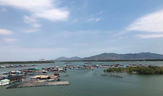 Bà Rịa - Vũng Tàu: Khuyến cáo người dân không hoang mang trước thông tin đầm chứa nước chuyển màu