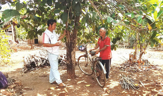 Gia Lai: Hết hạn cho thuê đất 5 năm, người dân vẫn chưa được nhận lại đất