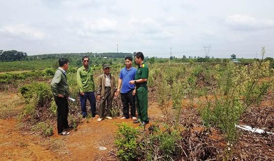Gia Lai: Giao trả đất cho các hộ dân làng Breng 2