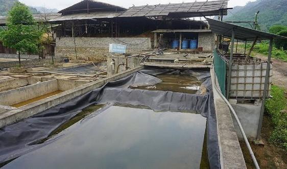 Thanh Hóa: Vụ cá chết trên sông Mã, đề nghị thu hồi giấy phép hoạt động của 4 công ty