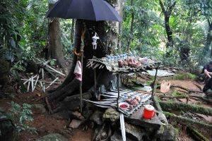 Lễ cúng thần rừng của Dân tộc Giáy ở Lai Châu