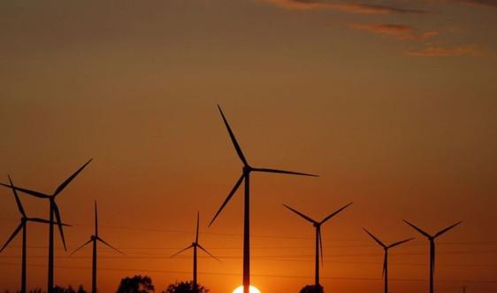 EU có thể phải đối mặt với các mục tiêu năng lượng tái tạo quốc gia