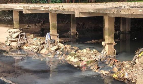 Nghệ An: Nhiều hồ điều hòa giữa lòng thành Vinh ô nhiễm nghiêm trọng