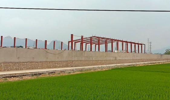 Thanh Hóa: Xử phạt Công ty Lam Kinh 120 triệu đồng do vi phạm về đất đai