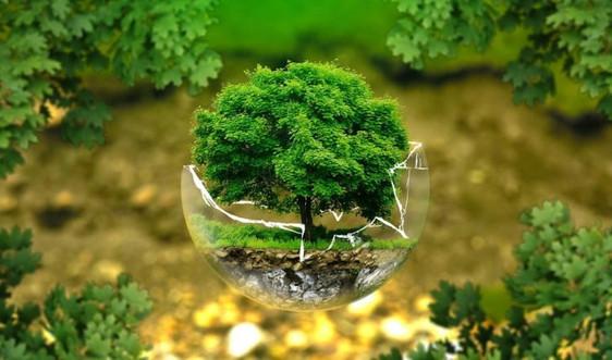 Bộ TN&MT họp hoàn thiện Nghị định quy định chi tiết một số điều của Luật Bảo vệ môi trường 2020