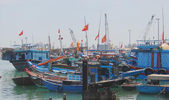 Thanh Hóa: Tăng cường quản lý hoạt động khai thác thủy sản
