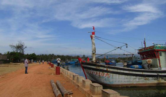 Bình Định: Cảng cá tổng hợp khu E đáp ứng nhu cầu dịch vụ hậu cần nghề cá Hoài Nhơn