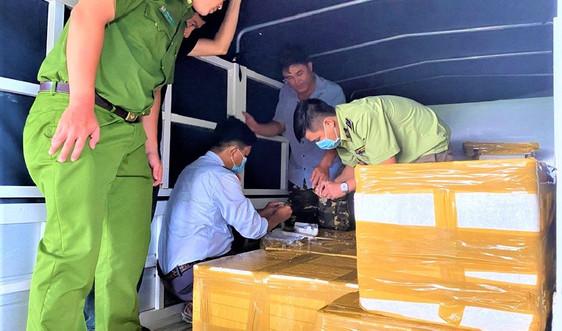 Kiên Giang: Phát hiện 300 kg tôm chứa tạp chất
