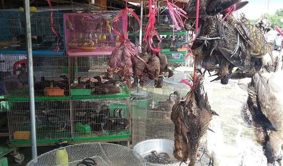 Hơn 90% người Việt Nam ủng hộ đóng cửa các chợ bán động vật hoang dã và cấm phá rừng