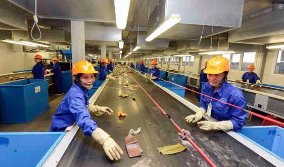 Quản lý chất thải bao bì từ sản xuất đến thu gom, tái chế