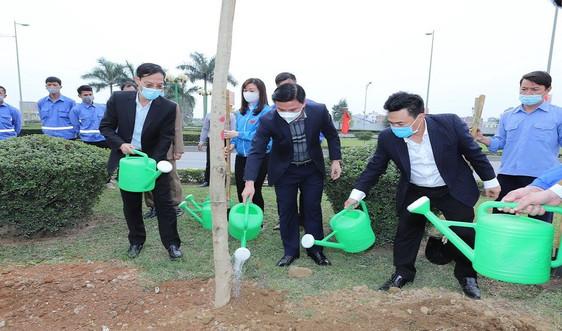 Thanh Hóa: Tăng cường trồng cây xanh, ứng phó với biến đổi khí hậu