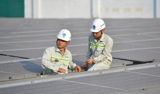 EVN nỗ lực điều độ hệ thống điện, giải tỏa công suất điện mặt trời