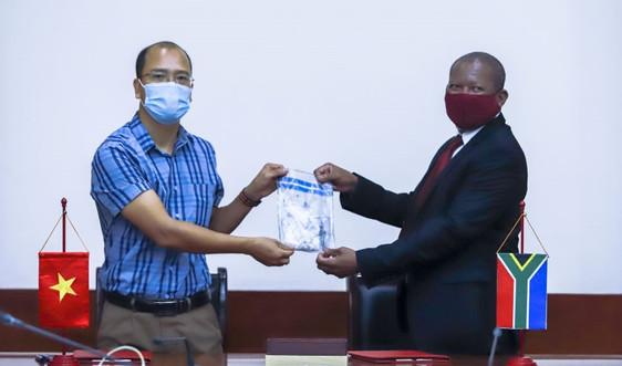 Việt Nam bàn giao mẫu sừng tê giác từ các vụ bắt giữ cho Nam Phi
