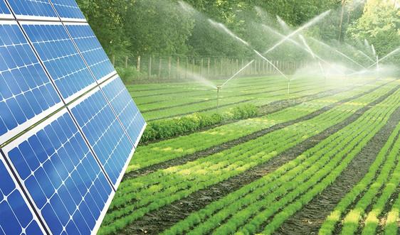 Phát triển khoa học công nghệ trong bối cảnh biến đổi khí hậu, ô nhiễm môi trường