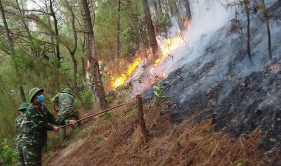 Nghệ An: Nắng nóng gay gắt, liên tiếp xảy ra cháy rừng