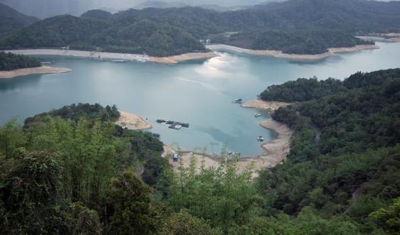 Đài Loan dỡ bỏ các hạn chế nước khi mưa làm dịu hạn hán