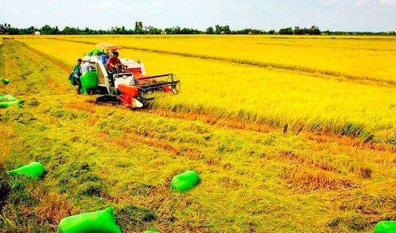 Phát huy nguồn lực đất đai cho phát triển bền vững đất nước