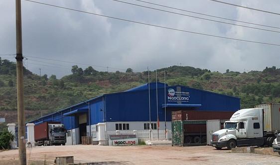 Nghi Sơn (Thanh Hóa): Chiếm dụng đất rừng phòng hộ, rừng đặc dụng xây dựng nhà xưởng trái phép