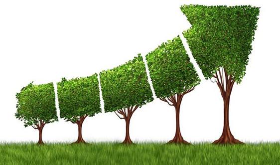 Chính sách ưu tiên khí hậu sẽ đón làn sóng đầu tư xanh