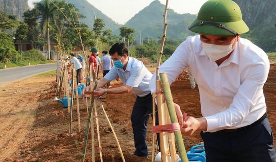 Sơn La: Phấn đấu trồng 14,2 triệu cây xanh giai đoạn 2021-2025