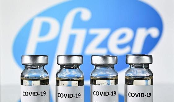 Tập huấn phân biệt vắc-xin ngừa Covid-19 Pfizer thật, giả