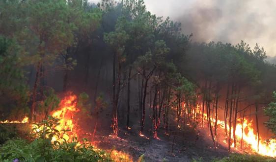 Chủ động ngăn chặn nguy cơ cháy rừng diện rộng ở các địa phương