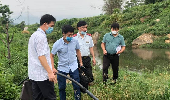 Yên Bái: Trang trại chăn nuôi lợn bị xử phạt 450 triệu đồng