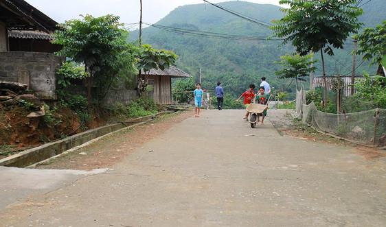 Yên Bái: Xã nghìn cây xanh
