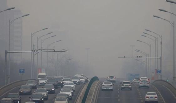 Thế giới phải loại bỏ 1 tỷ tấn CO2 vào năm 2025 để đáp ứng mục tiêu khí hậu