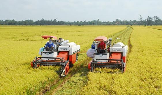 Cần bỏ hạn mức nhận chuyển nhượng quyền sử dụng đất nông nghiệp