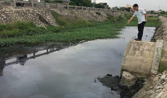 Ninh Bình: Xử phạt hành chính 112 trường hợp vi phạm pháp luật về bảo vệ môi trường