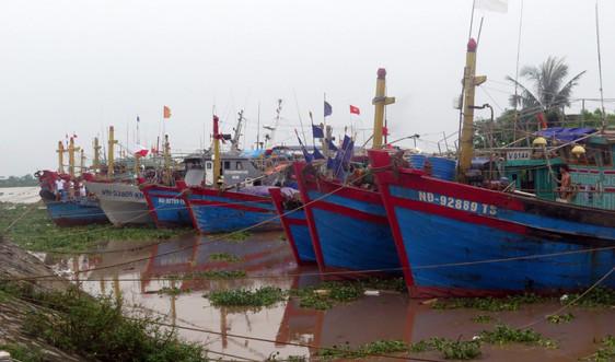 Nam Định: Cấm biển từ 12h ngày 7/7 để chủ động ứng phó với áp thấp nhiệt đới