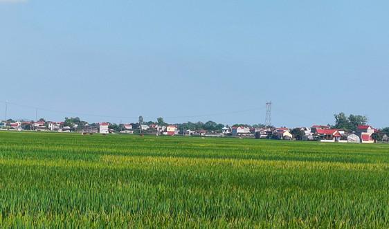 Thanh Hóa: Chủ trương lập quy hoạch khai thác quỹ đất