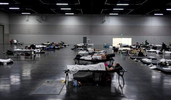 Nắng nóng kinh hoàng ở Mỹ, gần 200 người thiệt mạng