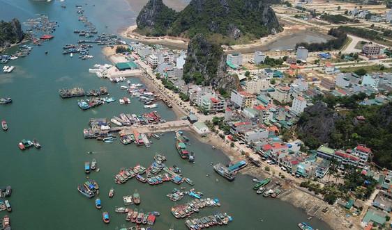 Quảng Ninh: Thu hồi 7 dự án quá hạn, không phù hợp tại Khu kinh tế Vân Đồn