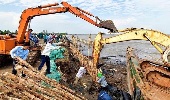 Cà Mau: Huy động mọi nguồn lực để ứng phó với tình trạng sạt lở bờ biển