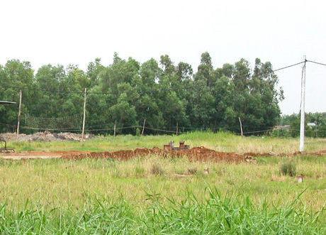 Chuyển mục đích sử dụng hơn 56 ha đất lúa tại tỉnh Hậu Giang