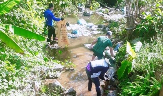Quảng Nam: Phật tử, đạo hữu ở Núi Thành gieo ý thức bảo vệ môi trường
