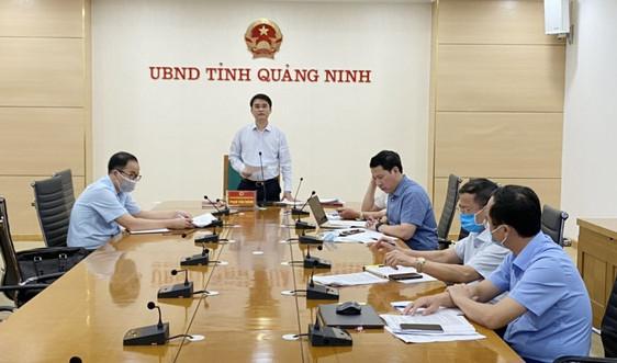 Quảng Ninh: Phấn đấu hoàn thành công tác kiểm kê đất rừng trong năm 2021